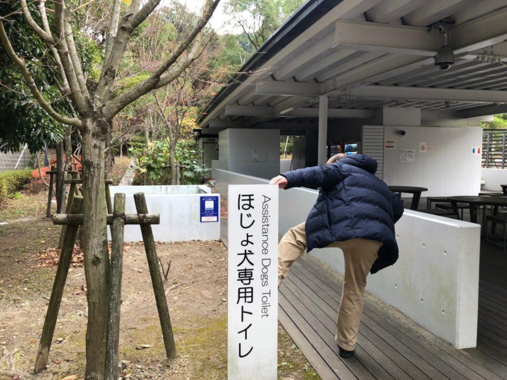 2019陽昇九州火車溫泉採果之旅 9